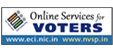 Online Services for Voters